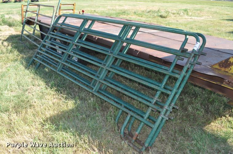 Cattle panels with head gate