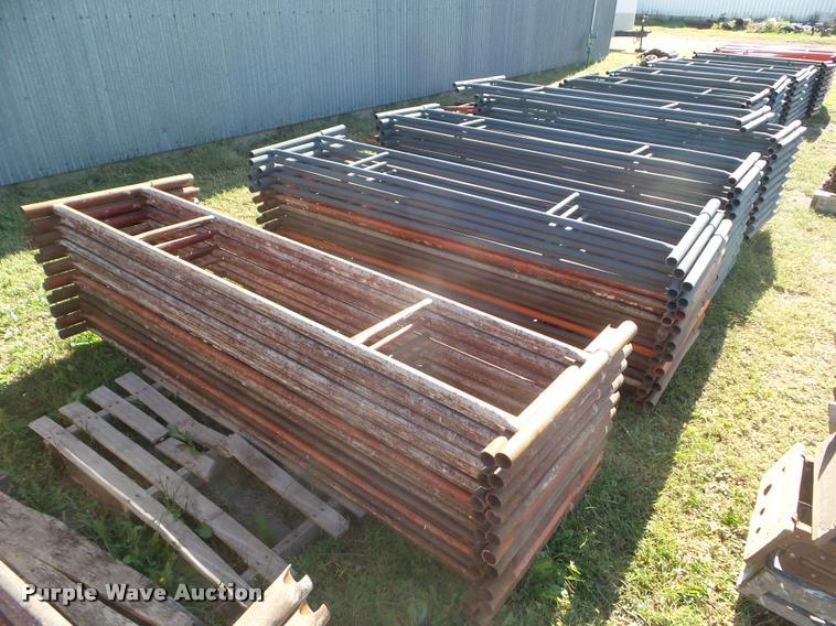 Brainard scaffold