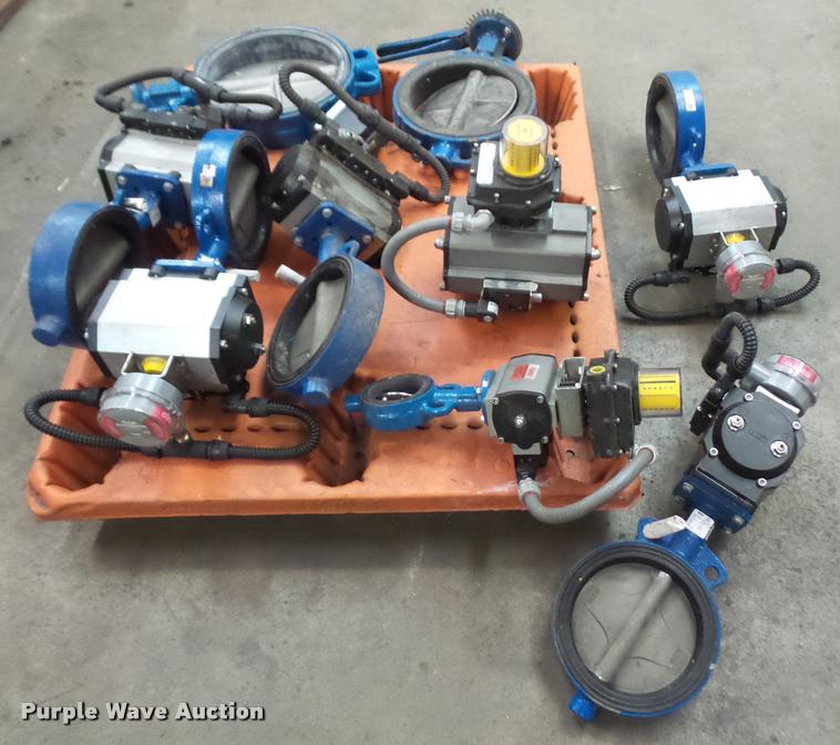 (8) gate valves