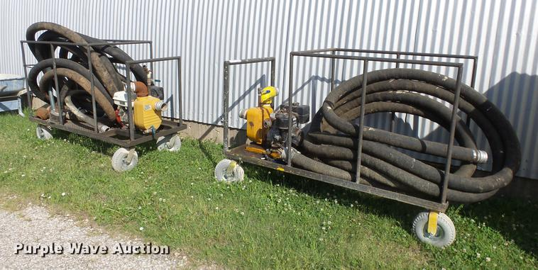 (2) pumps