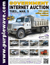 View March 5 Government Auction flyer