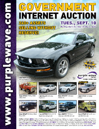 View September 10 Government Auction flyer