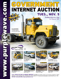 View November 5 Government Auction flyer