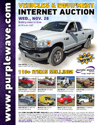View November 20 Vehicles and Equipment Auction flyer