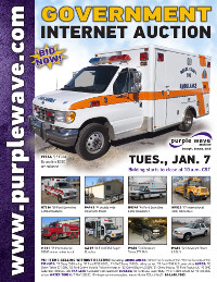 View January 7 Government Auction flyer