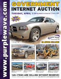 View April 1 Government Auction flyer