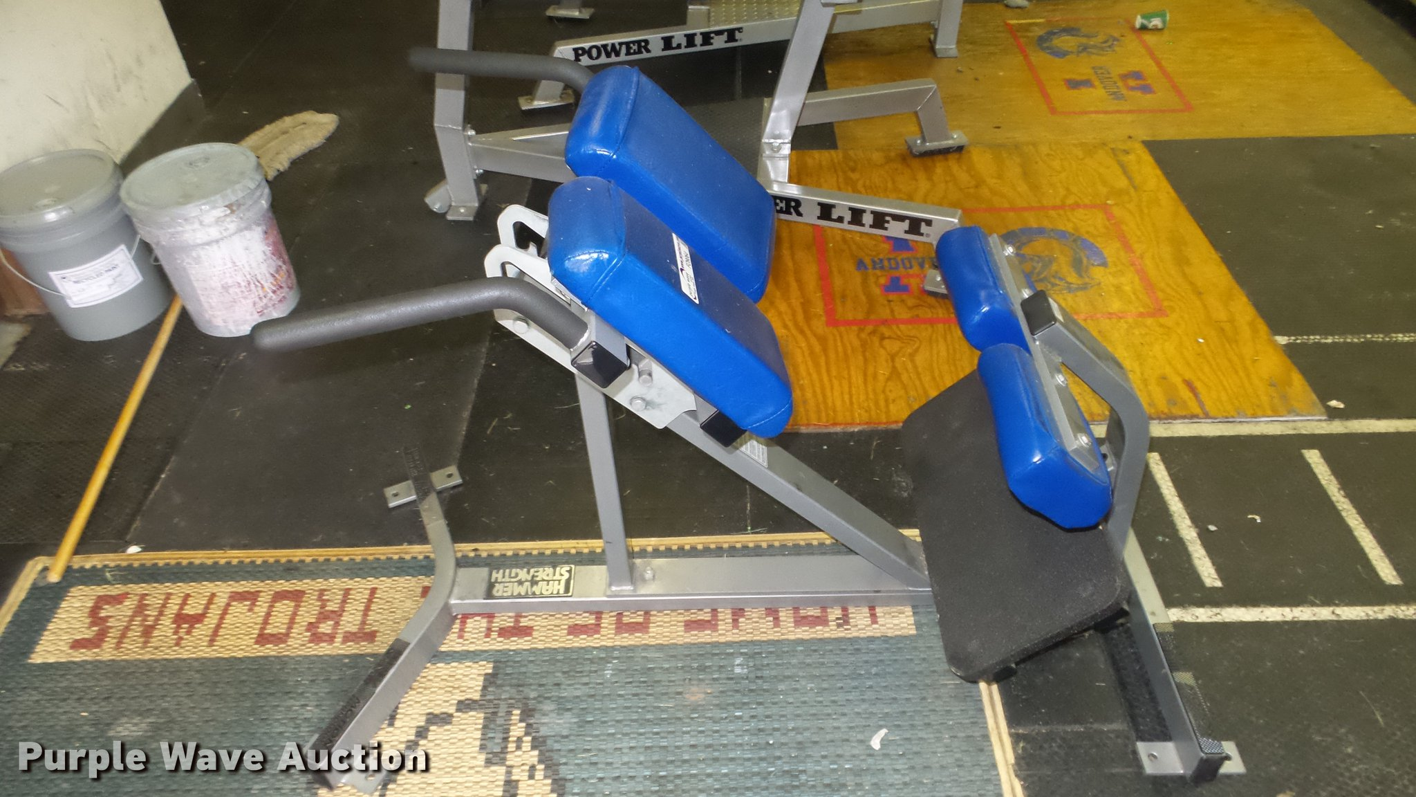 Hammer Strength back extension machine | Item FO9064 | SOLD!